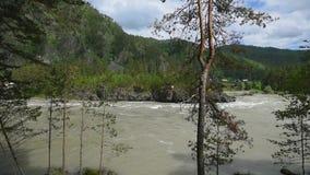Mening van Katun-rivier stock footage