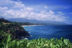 Mening van Kilauea Stock Fotografie