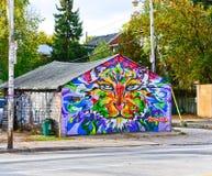 Mening van kleurrijk graffitikunstwerk in Toronto royalty-vrije stock foto