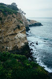 Mening van klippen langs de Vreedzame Oceaan, in La Jolla, Californië Stock Afbeeldingen