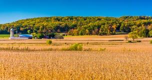Mening van landbouwbedrijven en heuvels dichtbij Hanover, Pennsylvania royalty-vrije stock foto