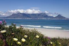 Mening van lijstberg en Kaapstad, Zuid-Afrika Royalty-vrije Stock Foto's