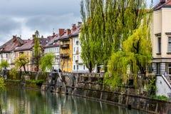 Mening van Ljubljana stock foto