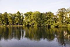 Mening van meer en bomen Stock Fotografie