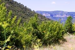 Mening van Montseny catalonië Stock Foto's