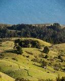 Mening van Mt Tamalpais naar oceaan royalty-vrije stock foto's