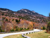 Mening van Mt. van de Grootvader van het Blauwe Brede rijweg met mooi aangelegd landschap van de Rand Stock Foto