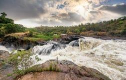 Mening van Murchison-Dalingen op het Victoria Nile-rivier Nationale Park Stock Foto's