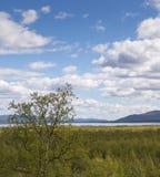 Mening van Nikkaloukta boven de noordpoolcirkel in noordelijk Zweden stock foto