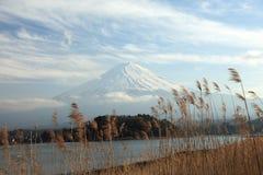 Mening van Onderstel Fuji Stock Afbeeldingen