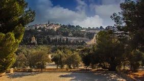 Mening van Onderstel van Olijven in Jeruzalem stock afbeeldingen
