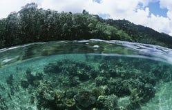 Mening van onderwaterscène en oppervlakteniveaumening stock fotografie