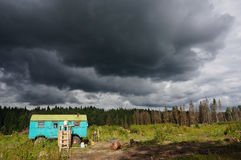Mening van ontruimd bos op een bewolkte dag Stock Foto