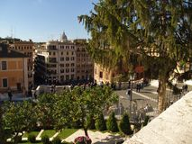Mening van oranje bomen op de Spaanse Stappen in Rome, Italië Stock Fotografie