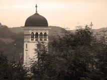 Mening van orthodoxe kathedraal stock fotografie