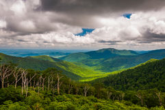 Mening van Oud Vod en Piemonte van Horizonaandrijving in het Nationale Park van Shenandoah Stock Foto