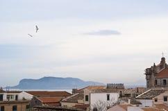 Mening van Palermo met daken en zeemeeuwen stock foto's