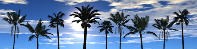 Mening van palmen stock illustratie