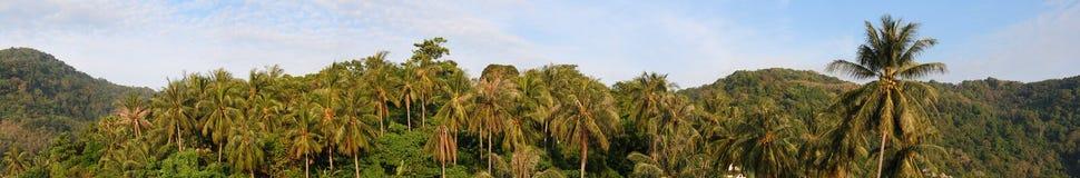 Mening van Phuket, Panorama Royalty-vrije Stock Foto's