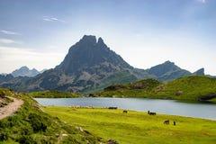Mening van Pic du Midi D ` Ossau in de Franse Pyreneeën stock afbeeldingen