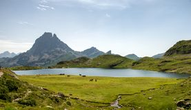 Mening van Pic du Midi D ` Ossau in de Franse Pyreneeën royalty-vrije stock foto