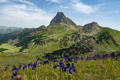 Mening van Pic du Midi D ` Ossau in de Franse Pyreneeën stock afbeelding