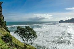 Mening van Piha-strand Royalty-vrije Stock Afbeeldingen