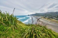 Mening van Piha-strand in Nieuw Zeeland Stock Afbeeldingen