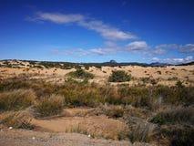Mening van Piscinas-Duin in Sardinige, een natuurlijke woestijn Stock Fotografie