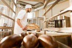 mening van plank bij bakker het werken stock foto's