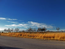 Mening van platteland op de weg Stock Foto