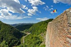 Mening van Poenari-Citadel, de Roemeense Karpaten Stock Foto's