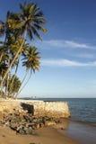 Mening van Ponta Verde stock afbeeldingen