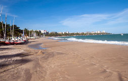 Mening van Ponta Verde Royalty-vrije Stock Fotografie