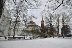 Mening van Riga stock fotografie