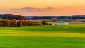 Mening van rollende heuvels en landbouwbedrijfgebieden bij zonsondergang in landelijk Co van York Royalty-vrije Stock Foto's