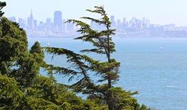 Mening van San Francisco van Belvedere Eiland Stock Foto's