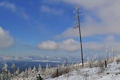 Mening van sneeuwbergen met een eenzame boom Stock Afbeelding