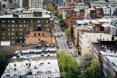 Mening van St Paul Street, in Mount Vernon, Baltimore, Maryland Stock Afbeelding