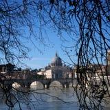 Mening van St Peter Basilica door de winterBomen Royalty-vrije Stock Foto