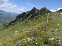 Mening van Stubnerkogel, Slechte Gastein, Almorama, Salzburg, Oostenrijk Royalty-vrije Stock Foto