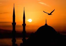 Mening van Sultanahmet 's nachts, Istanboel Stock Fotografie