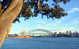 Mening van Sydney Opera House, Brug & Moreton-Baaifig. Royalty-vrije Stock Fotografie