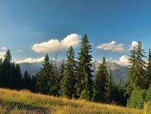 Mening van Tatra Royalty-vrije Stock Afbeeldingen