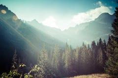 Mening van Tatra-Bergen van wandelingssleep polen europa Stock Afbeeldingen