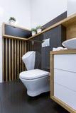 Mening van toilet Royalty-vrije Stock Foto