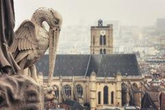 Mening van Toren van Notre-Dame de Paris stock afbeeldingen