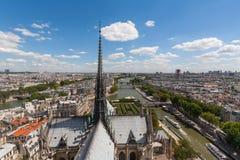 Mening van Torenspits van Notre Dame die over Parijs kijkt Stock Foto's