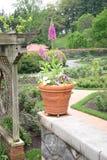 Mening van tuin Stock Foto