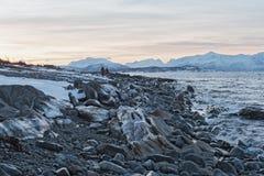 Mening van Ullsfjorden en de Lyngen-Alpen, Lyngen, Tromsoe, Noorwegen Royalty-vrije Stock Afbeelding